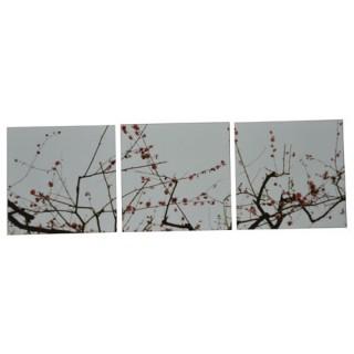 Cadre imprimé 3 photos - L. 150 cm - Fleurs