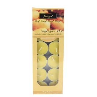 Lot de 12 bougies parfumées Fruit - Mangue