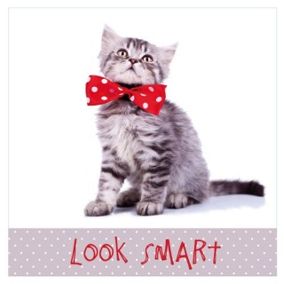 Toile imprimée Chat - Look smart