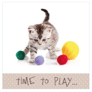 Toile imprimée Chat - Time to play