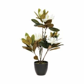 Magnolia artificiel en pot - H. 60 cm