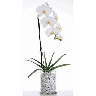 2 Stickers vitre Zen - 33 x 45 cm - Fleur blanche