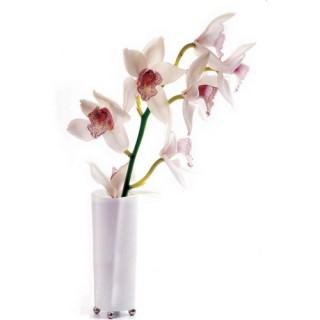 2 Stickers vitre Zen - 33 x 45 cm - Orchidée