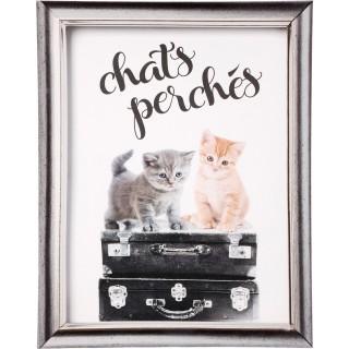 Toile imprimée Chat - 38 x 48 cm - Chats perchés
