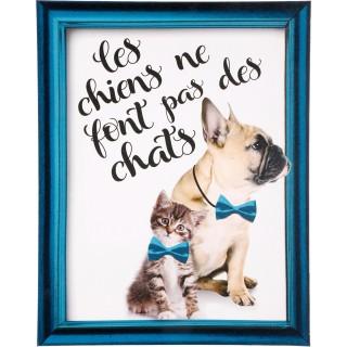 Toile imprimée Chat et Chien - 38 x 48 cm - Chats ne font pas les chiens