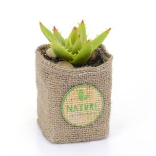 Plante artificielle - Hauteur 12,5 cm - Feuilles à piques