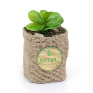 Plante artificielle - Hauteur 12,5 cm - Feuilles rondes