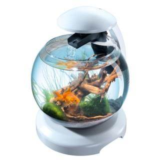 Aquarium Cascade Globe Tetra - 6,8 L - Blanc