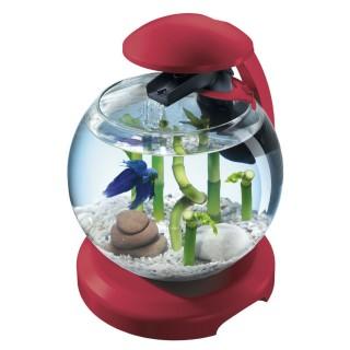 Aquarium Cascade Globe Tetra - 6,8 L - Bordeaux
