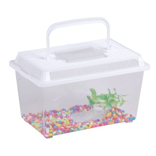 Aquarium avec pierres et algues - 27 x 17 x 15,5 cm - Blanc