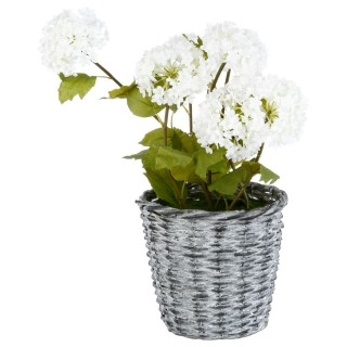 Composition florale Boule de neige - H. 50 cm - Vert