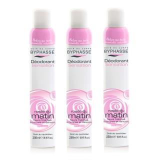 Lot de 3 - Déodorant Spray 24h - Rosé du matin - 250 ml