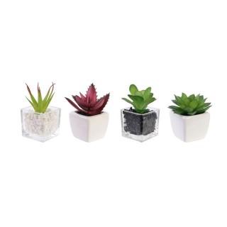 4 Plantes grasses artificielles en pot - H. 13 cm
