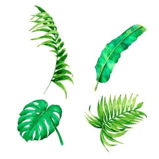 Lot 2x Sticker nature Jungle - 70 x 50 cm - Blanc et vert